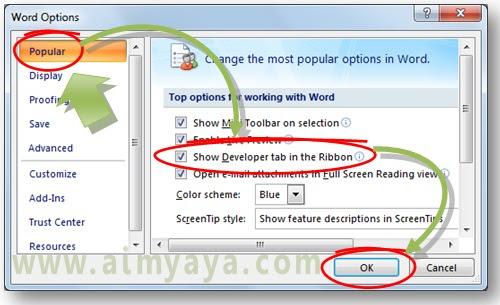 Gambar: Cara mengatur konfigurasi untuk memunculkan tab ribbon Developer Microsoft Word