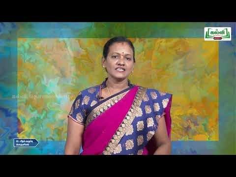12th Economics பன்னாட்டு பொருளியல் பாடம் 7 Kalvi TV
