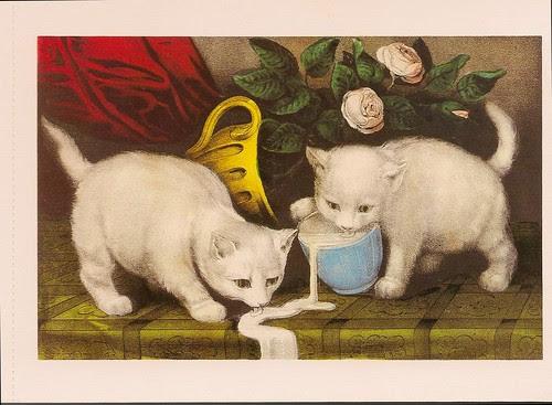 Kitties and Cream
