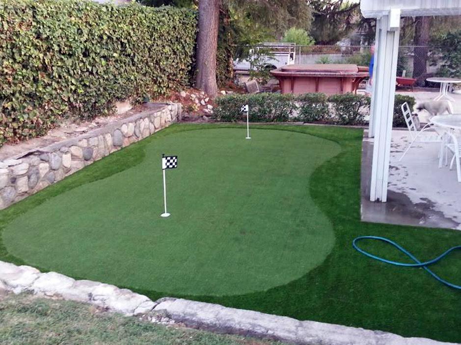 Turf Grass Riverview Florida Putting Green Flags Backyard