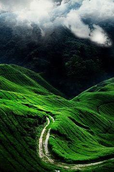 Hill road.
