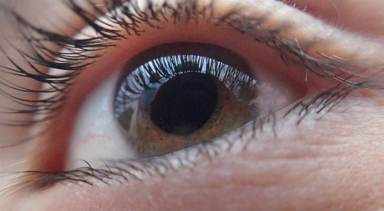 Resultado de imagem para foto ilustrativa da cornea