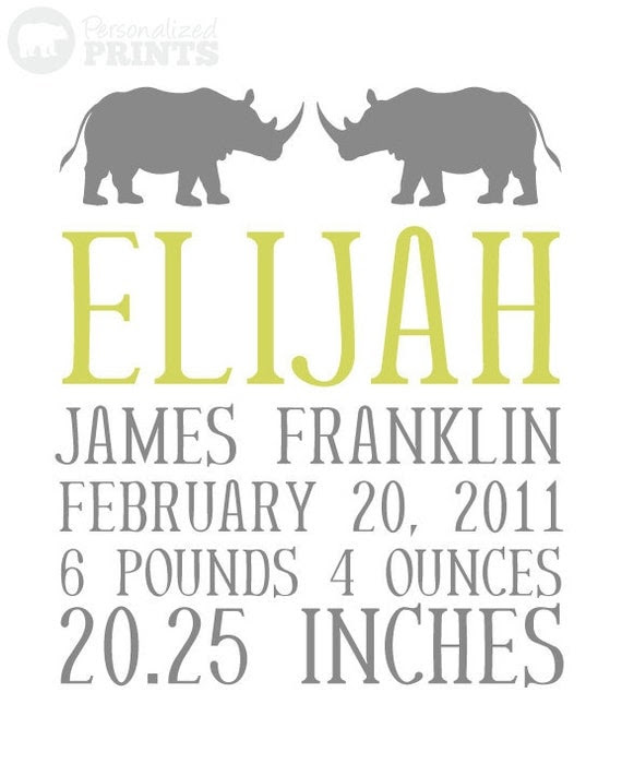 Custom Rhino Baby Name - 8x10 Print Newborn Birthday - Custom Colors