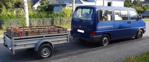 Mostäpfel Auto mit Anhänger