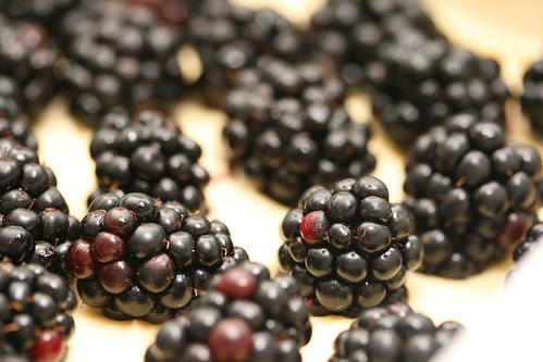 Blackberry Crumb Bars (Everyday Food)