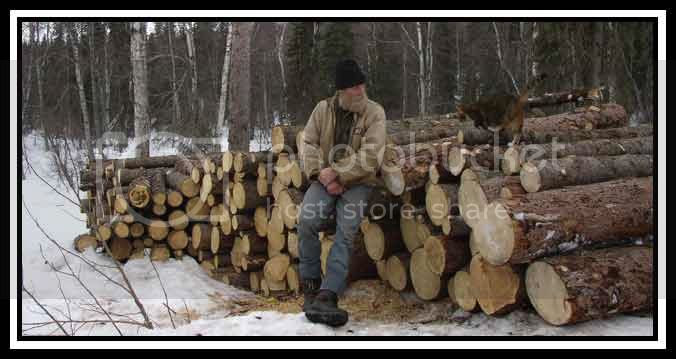 Almost enough firewood