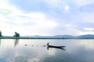 A Rohingya Muslim man rows his boat on a river in …