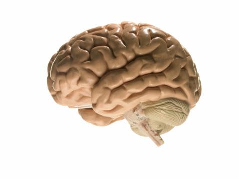 5 doenças assustadoras que afetam o cérebro