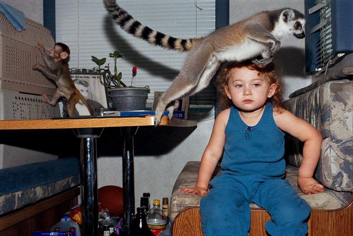 O Mundo de Amelia - A menina que cresceu com os animais e os considera seus irmãos 04
