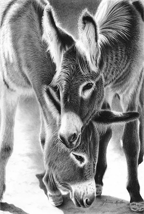 85 Simple And Easy Pencil Drawings Of Animals For Every ...