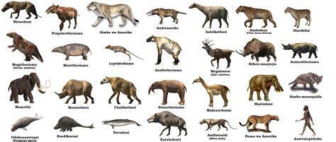Swahili Land: Mamalia wa Kabla ya Historia (Prehistoric mammals)