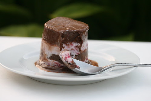 Chocolate-Banded Ice Cream Torte (Tuesdays with Dorie)
