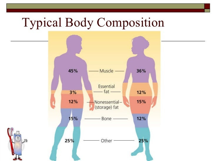 overweight definition body fat percentage