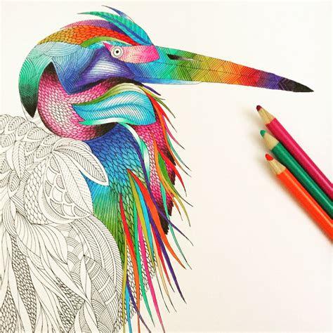completed   millie marotta animal kingdom colouring