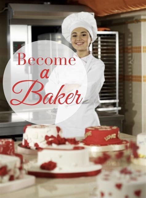 Pastry and Baking School Guide