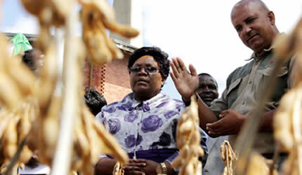 Vice-President Mujuru listens while Seed Company head of marketing Mr Ivan Craig explains during a tour of the firm's stand at the Zimbabwe International Trade Fair which ended in Bulawayo on April 27, 2013. (Photo: Percy Musiiwa) by Pan-African News Wire File Photos