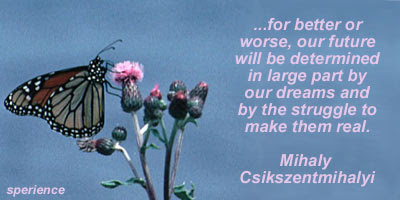 Mihaly Csikszentmihalyi's quote #3