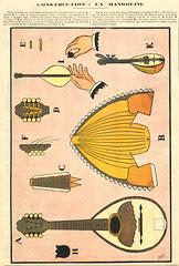 gallibellimg (134)