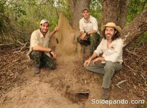 Equipo del armadillo gigante de izquierda a derecha: Gabriel Massocato, Danilo Kluyber y Arnaud Desbiez.   Foto: Kevin Schafer/Proyecto Armadillo Gigante del Pantanal.