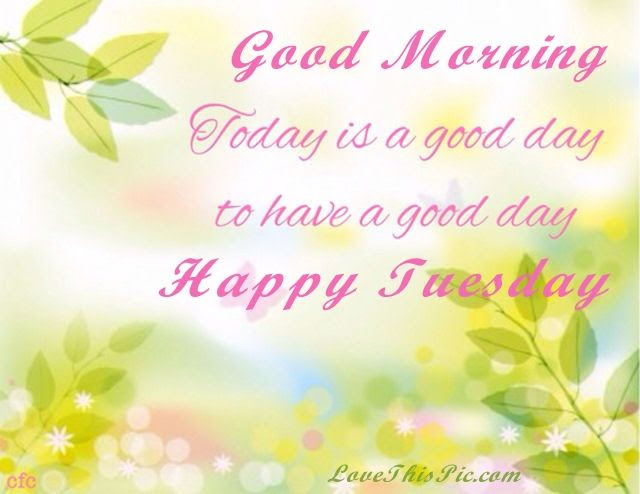 Good Morning Tuesday Have A Good Day Pictures Photos And Images
