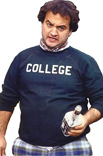 Image result for animal house college