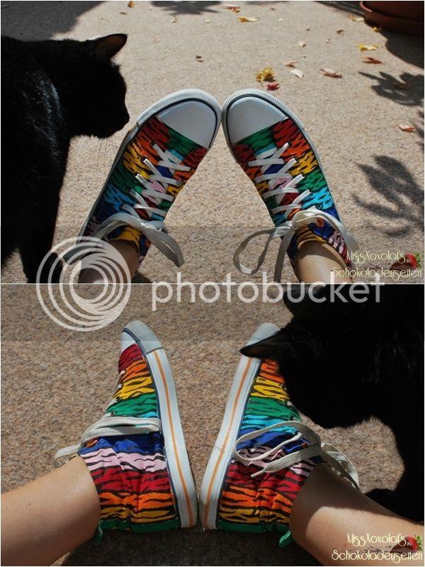 Regenbogen. Tigerstreifen. H&M Canvas-Schuhe. Schwarze Katze