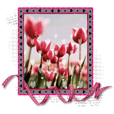 Lilyz Images Wishing You A Wonderful Weekend Lily Wallpaper And