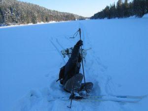 ole på ski