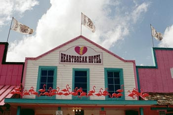 Nostalgiaville Flamingos