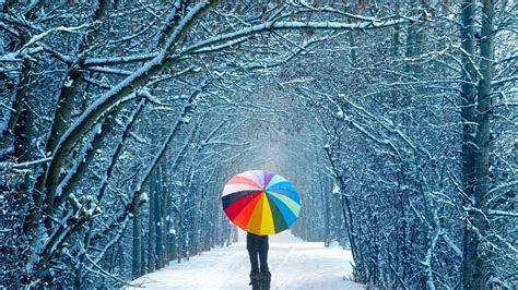 winter walk wallpaper  background  id