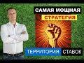 Андрей савельев отзывы ставки на спорт Канск