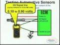 4 Wire O 2 Sensor Wiring Diagram