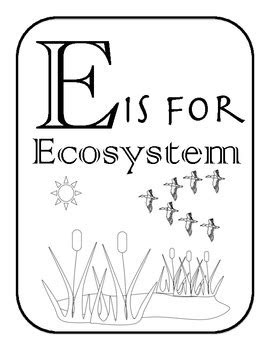 ecosystem alphabet  vocabulary coloring pages