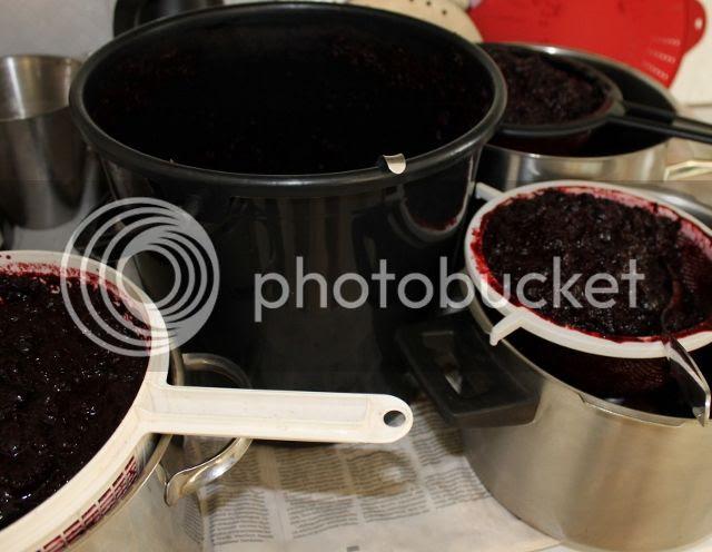 mustikkamehua tulossa photo 2013-07-13150713007640x496_zpsf4a6bb27.jpg