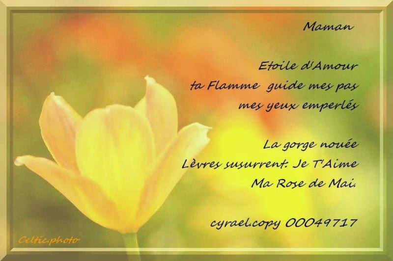 Poeme Anniversaire Maman Decedee Anniversaire