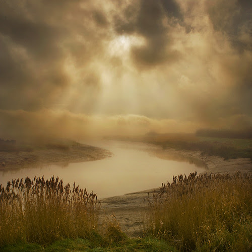 Marshland secrets por adrians_art