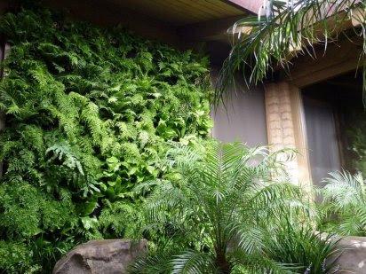 Jardines Verticales: una manera estética de mejorar la calidad ambiental