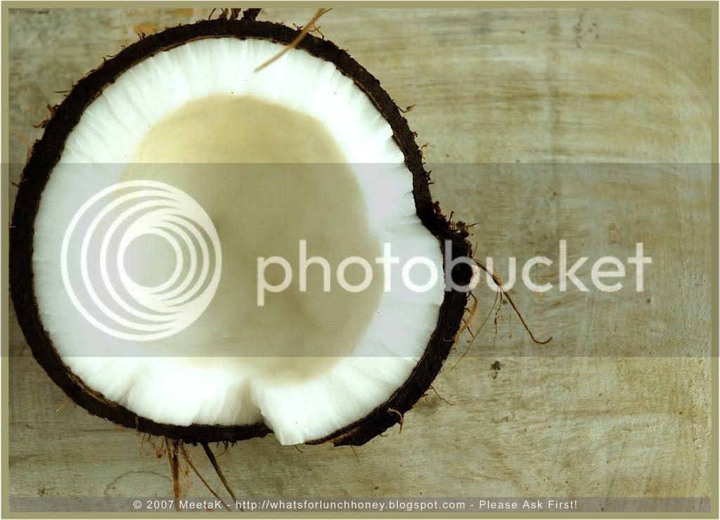 Coconut 02) by MeetaK