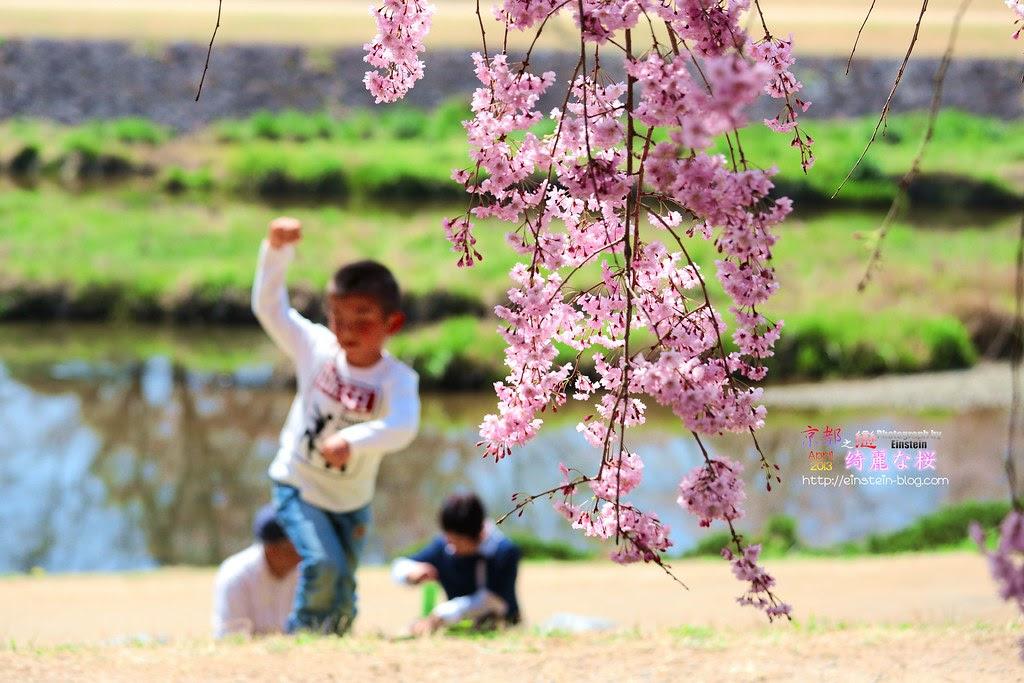 2013-04-05-12h31m42IMG_2496
