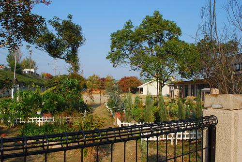 garden in the school grounds