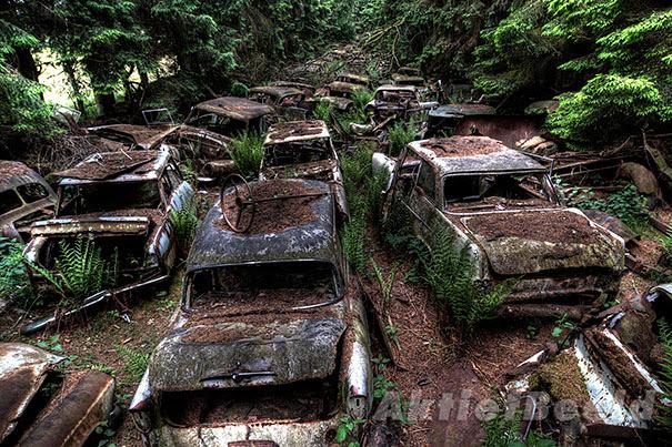 Chatillon-car-cemitério abandonado-carros-cemitério-Bélgica-10