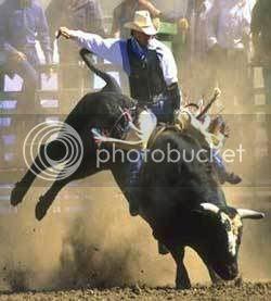 photo bull-riding_zps1334fa8a.jpg