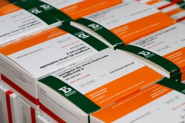 Ceará recebe maior lote de CoronaVac, com mais de 470 mil doses