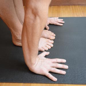 sun salutations yoga anatomy fingers front