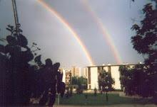 printemps 1998