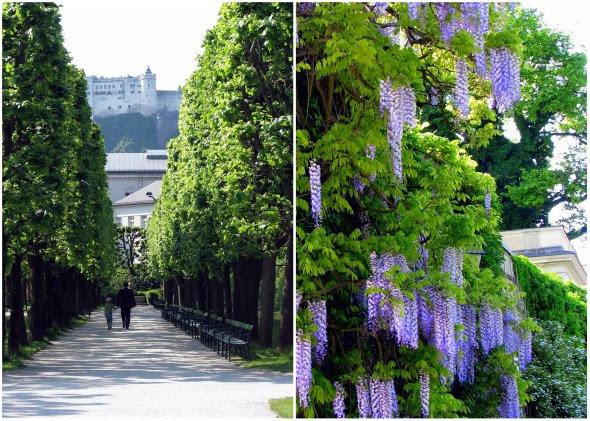 Salzburg 2008-1_cropped