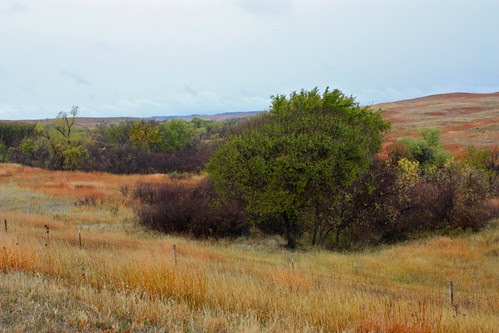 Autumn Color in South Dakota