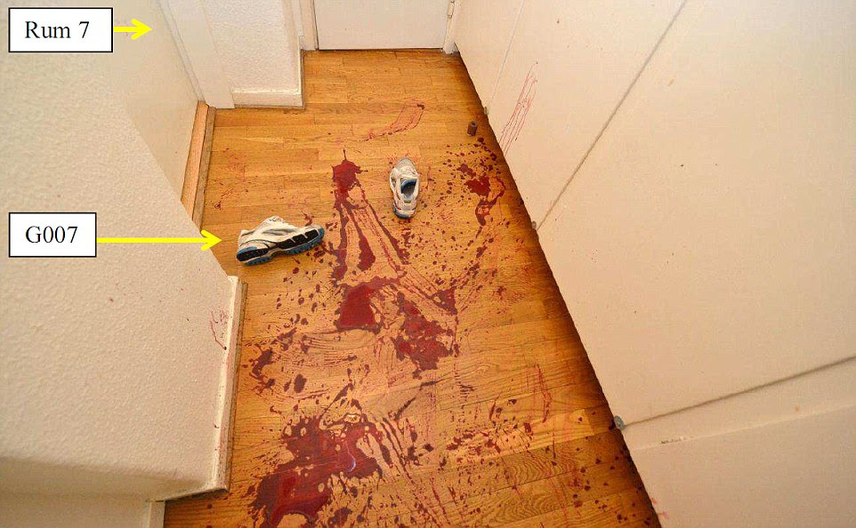 Escape: Miss Mehzer then tried to crawl away from her attacker, making her way along the corridor, leaving a trail of blood