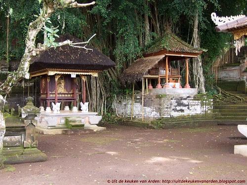 Bali 2010 - Tempel