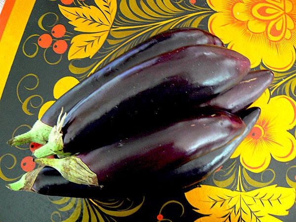 aubergines de chez Eniz.jpg